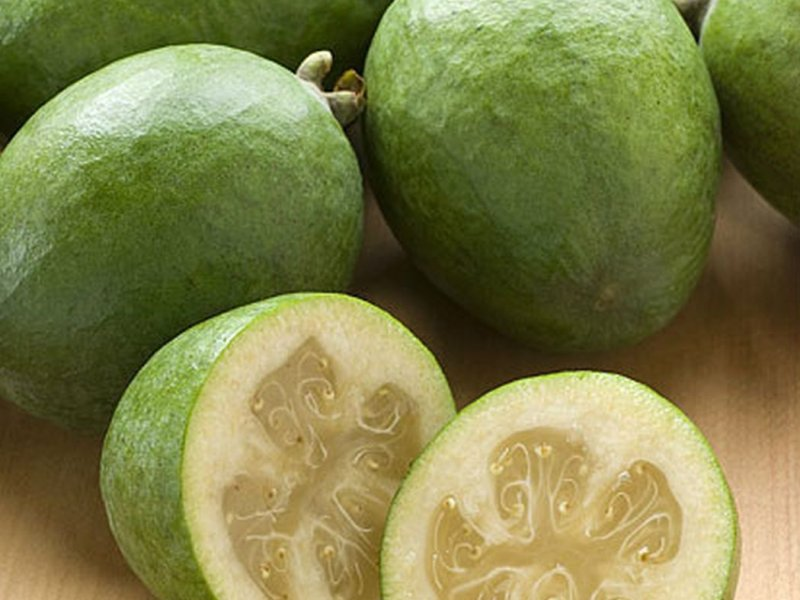 Benefits of feijoa fruit