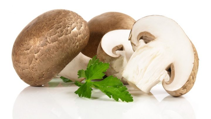 In the case of purchase of land displaced persons mushrooms 30 Times more Vitamin D: Are mushrooms healthy?