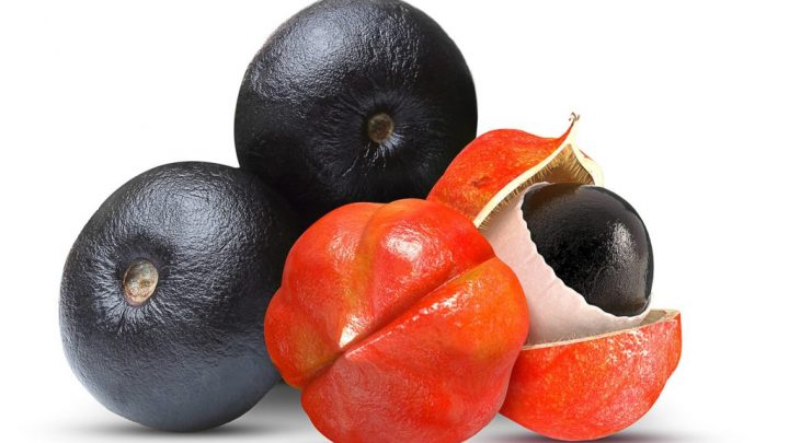 Guarana – and-effect and application