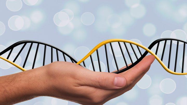 In prenatal testing, 'genomics' sometimes sees what genetic tests can't