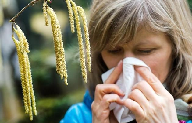 Hay fever comes and goes with age – doctors puzzle over the reasons