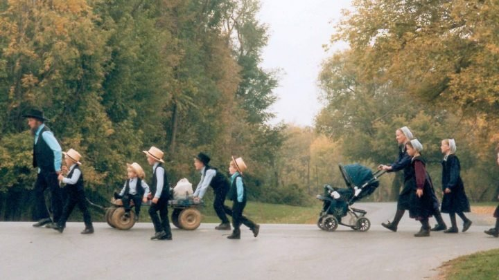 Ever Wondered Why The Amish Don't Get Cancer? THIS Is Why