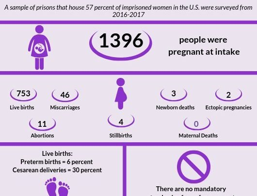 First of its kind statistics on pregnant women in US prisons