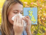 Pollen count warning: Forecast today revealed – how to avoid hay fever symptoms