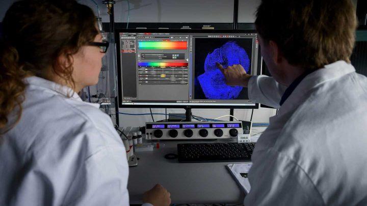 Alzheimer's in minibrains