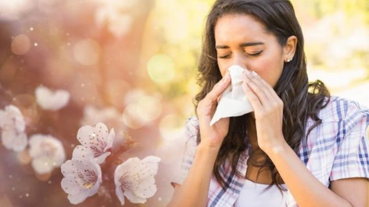 Pollen count: High counts today could trigger hay fever – six ways to reduce symptoms