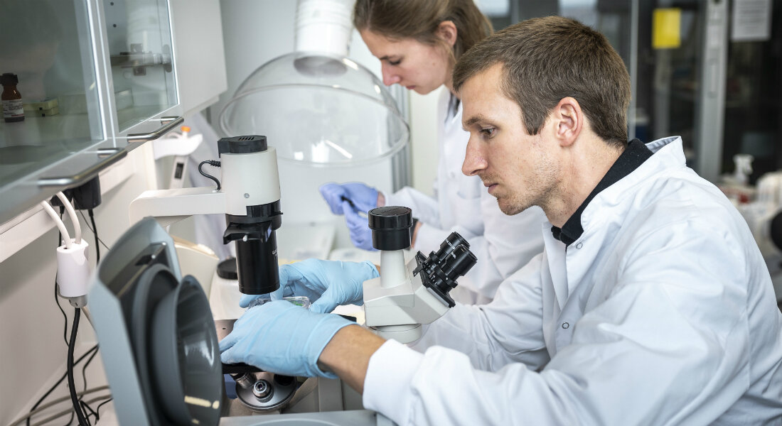 Antibiotics can inhibit skin lymphoma