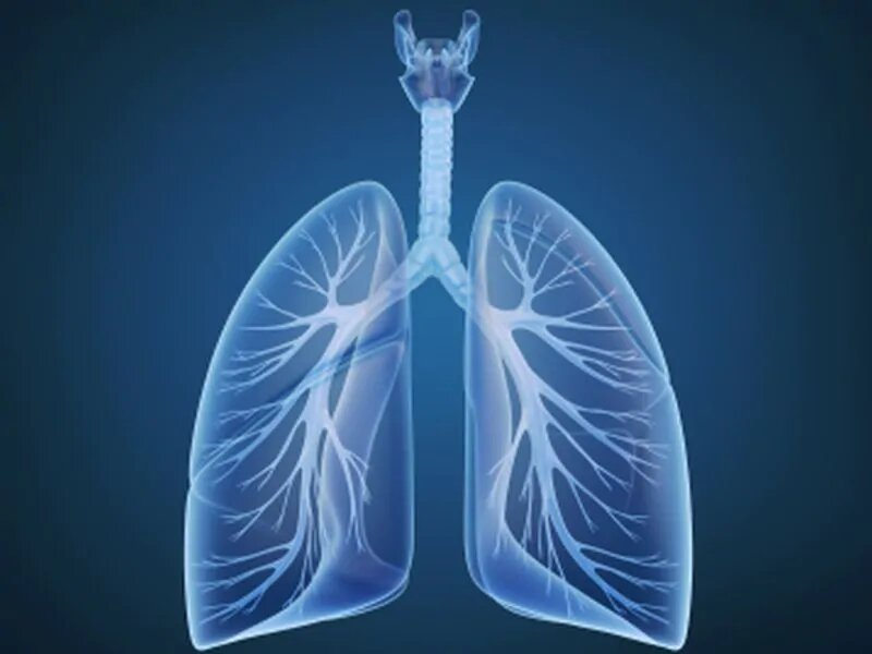 Lung cancer incidence rates generally declined from 2007 to 2016