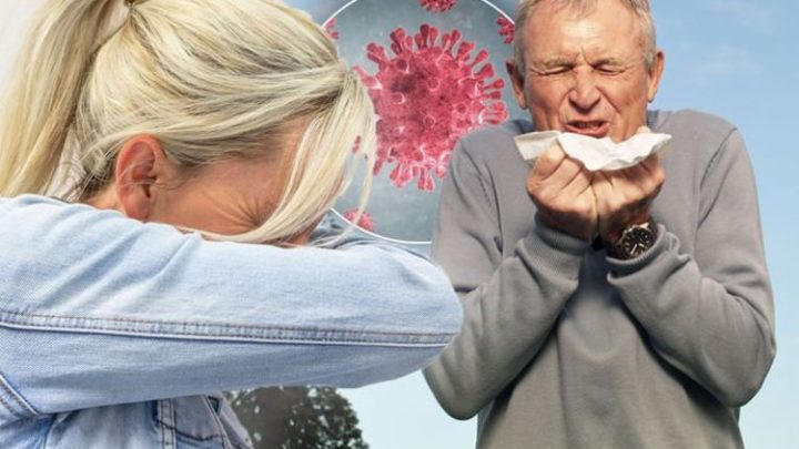Coronavirus symptoms: How to tell if it's NOT hayfever – key signs YOU have the virus