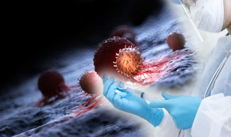 Coronavirus update: T cells could help in targeting COVID-19, according to research