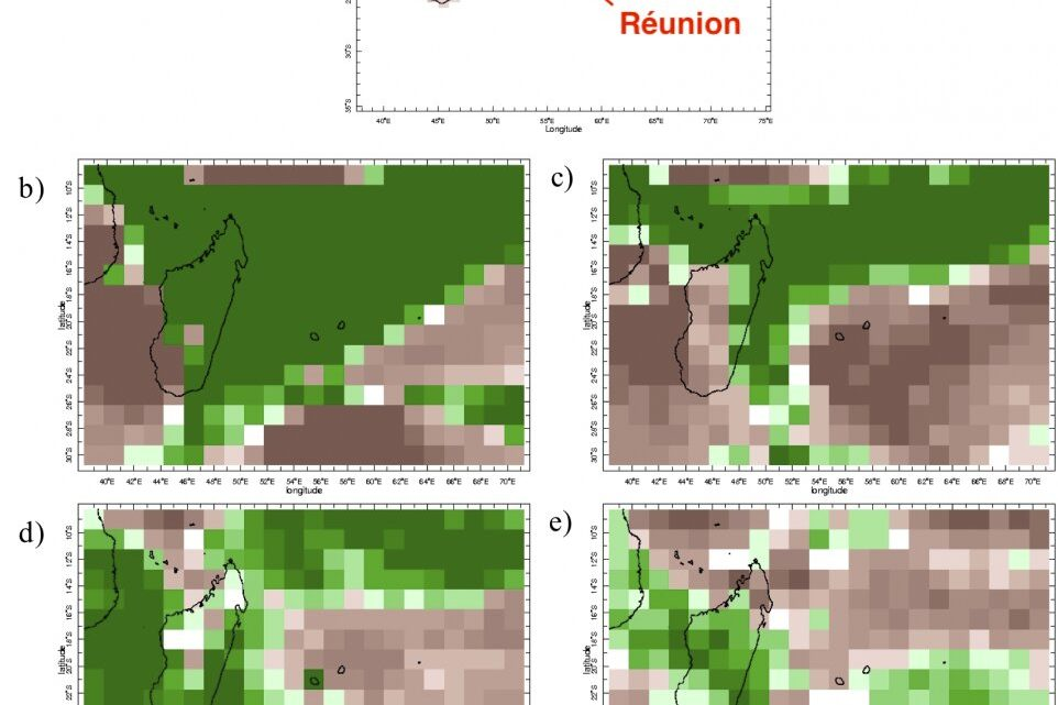 Researchers show potential for subseasonal forecasts to predict dengue outbreaks