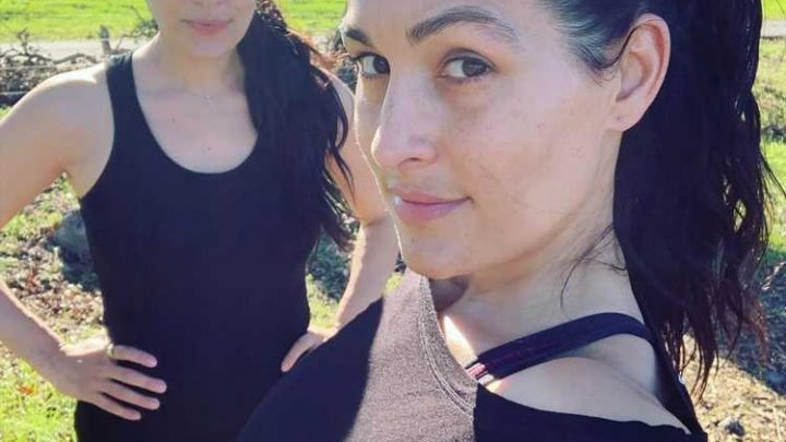 Nikki and Brie Bella Say They're on a Baby Weight Loss Journey Together