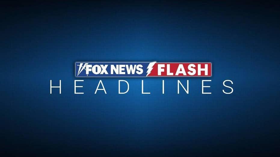 Michigan confirms first human hantavirus case