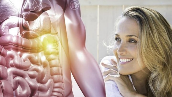 How to live longer: Improving your gut health may boost heart health and lower cancer risk