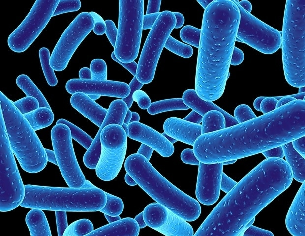 Research reveals new evolutive mechanism of bacteria that expands pathogenic potential